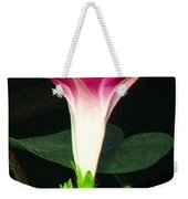 Morning Glory Stand Up Weekender Tote Bag