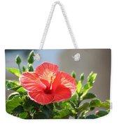 Morning Light Hibiscus Weekender Tote Bag
