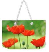 Morning Light Poppies Weekender Tote Bag
