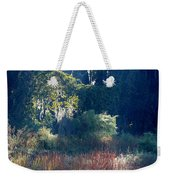 Morning Marsh Sunshine Weekender Tote Bag