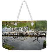 Morning Reflection Of Cathedral Group Weekender Tote Bag