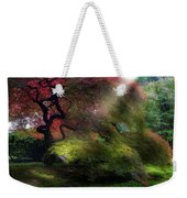 Morning Sun Rays On Old Japanese Maple Tree In Fall Weekender Tote Bag