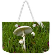 Morning Surprise Weekender Tote Bag