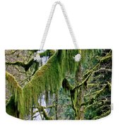 Moss At Munson Creek Weekender Tote Bag
