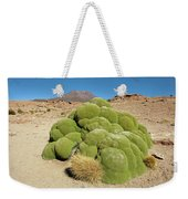 Moss Covered Rocks Weekender Tote Bag