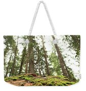 Moss On A Log Under The Cedars Weekender Tote Bag