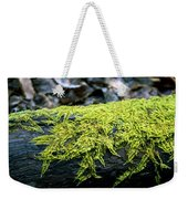 Mosss On Blackened Log Weekender Tote Bag
