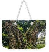 Mossy Old Tree Weekender Tote Bag