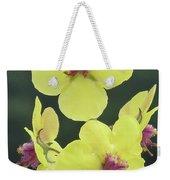 Moth Mullein Wildflowers - Verbascum Blattaria Weekender Tote Bag