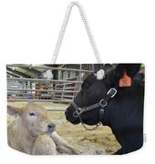 Mother And Child Weekender Tote Bag by To-Tam Gerwe