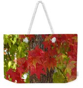 Mother Nature's Style Weekender Tote Bag