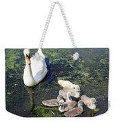 Mother Swan And Baby Cygnets Weekender Tote Bag