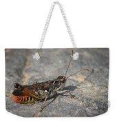 Mottled Grasshopper Weekender Tote Bag