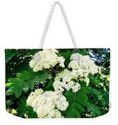 Mountain Ash Blossoms Weekender Tote Bag