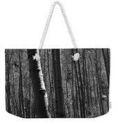 Mountain Aspens Weekender Tote Bag