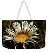 Mountain Thistle French Pyrenees Weekender Tote Bag