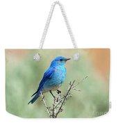 Mountain Bluebird Beauty Weekender Tote Bag