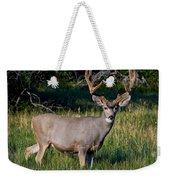 Mountain Buck  Weekender Tote Bag
