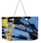 Mountain Goat And Larches Weekender Tote Bag