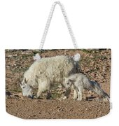 Mountain Goat Kid Stretches By Mom Weekender Tote Bag