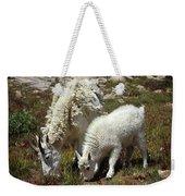 Mountain Goat Nanny And Kid Foraging At Columbine Lake - Weminuche Wilderness - Colorado Weekender Tote Bag