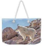 Mountain Goat Takes In Its High Altitude Home Weekender Tote Bag