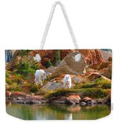 Mountain Goats In Early Fall Weekender Tote Bag