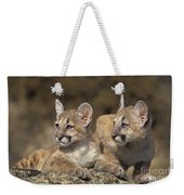 Mountain Lion Cubs On Rock Outcrop Weekender Tote Bag