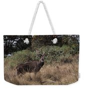 Mountain Nyala Weekender Tote Bag