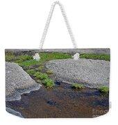 Mountain Sanderling Weekender Tote Bag