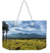 Mountain View After Rain Weekender Tote Bag