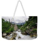 Mountain Vista Weekender Tote Bag by Margaret Pitcher