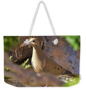Mourning Dove On The Hillside Weekender Tote Bag