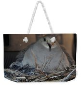 Mourning Dove With One Of Two Chicks Weekender Tote Bag