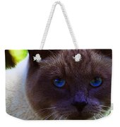 Mr. Blue Eyes Weekender Tote Bag