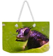 Mr. Fly Weekender Tote Bag