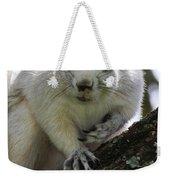 Mr. Inquisitive I  Weekender Tote Bag