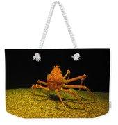 Mr. Krabbs Weekender Tote Bag