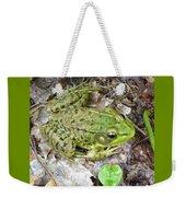 Mr. Perfectfrog Weekender Tote Bag