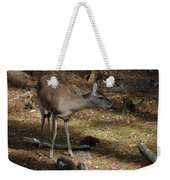 Ms Doe Weekender Tote Bag