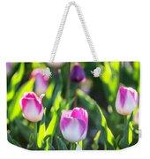 Msu Spring 2 Weekender Tote Bag