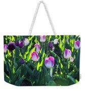 Msu Spring 3 Weekender Tote Bag