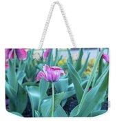 Msu Spring 33 Weekender Tote Bag