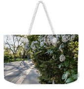 Msu Spring 43 Weekender Tote Bag