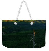 Mt Hood With Snag Weekender Tote Bag
