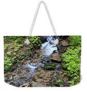 Mt. Spokane Creek 2 Weekender Tote Bag