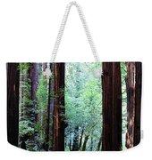 Muir Woods 1 Weekender Tote Bag