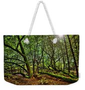 Muir Woods Rejuvenation Weekender Tote Bag