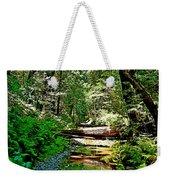 Muir Woods Study 22 Weekender Tote Bag