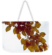 Mulberry Autumn Weekender Tote Bag